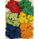 Sachet 600 g lichen stabilisé coloré