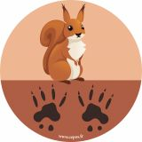 Jeu 15 stickers empreintes animaux