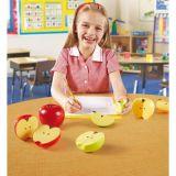 Les pommes fractions magnétiques