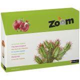 Imagier Zoom - Découvrir le monde végétal
